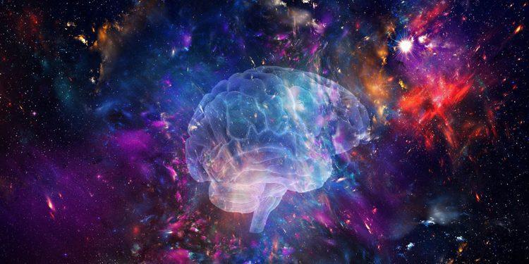 «Мозг: Вселенная внутри нас», выставка